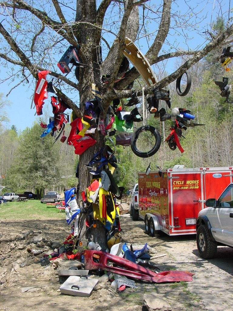Deals Gap Tree Of Shame Mother Day Freebies Columbus Ohio